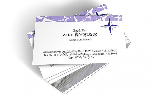 Polaris Business Card Design